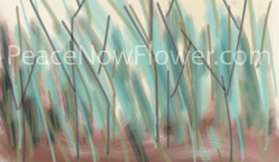grass(water)