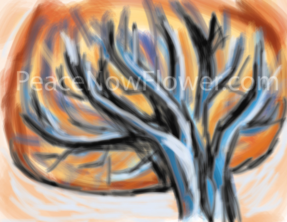 orange_tree(water