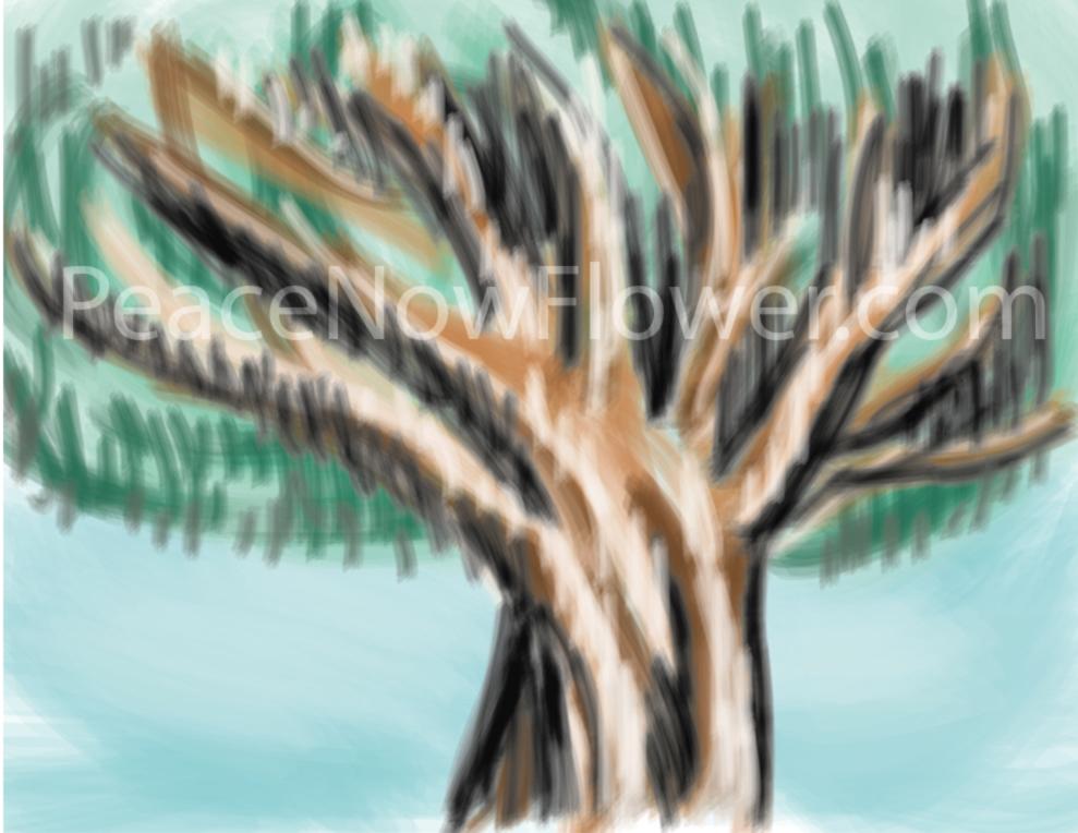 tree)water